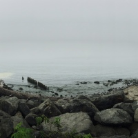 Photography: La Push Beach, WA.